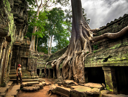 Ta Phrom Temples Of Angkor